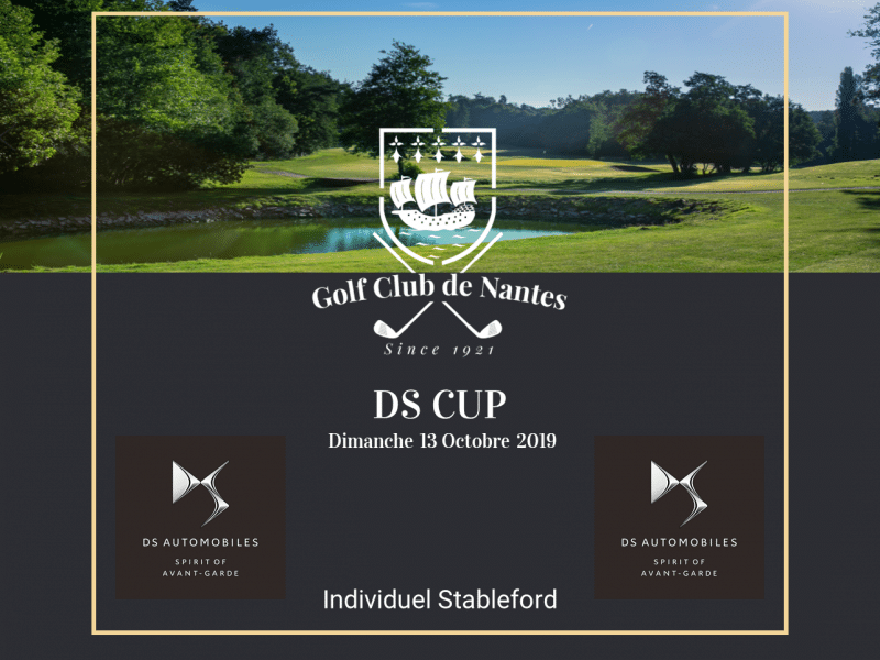 DS Cup